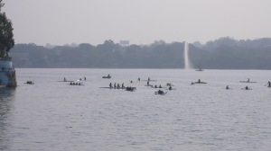 Avirons sur le lac de Bhopal