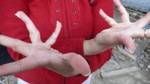Danse indienne , les mains de tania