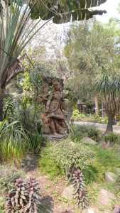 Calcutta , jardin botanique
