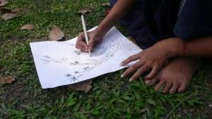 Cours de dessin au jardin botanique