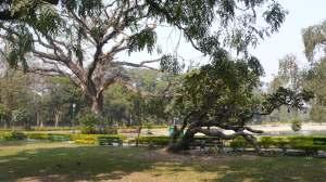 Dans le parc du Victoria Memorial